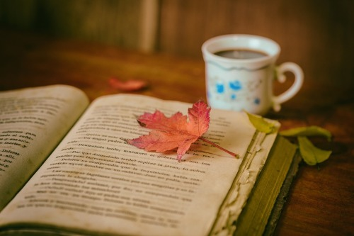 autumn-book-pic