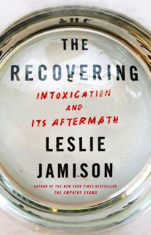 Image result for leslie jamison recovering